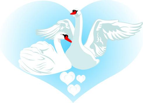 Mute Swan svg #17, Download drawings