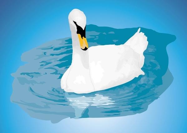 Mute Swan svg #16, Download drawings