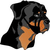 Muzzle clipart #3, Download drawings