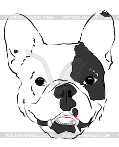 Muzzle clipart #20, Download drawings