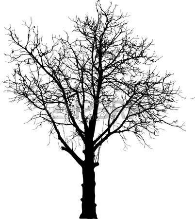 Naked Tree clipart #11, Download drawings