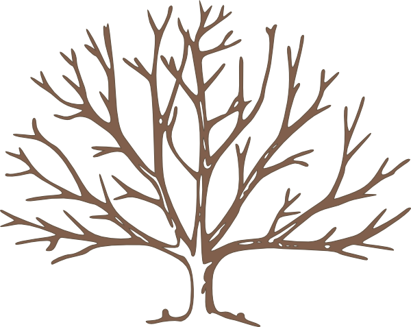 Naked Tree clipart #16, Download drawings