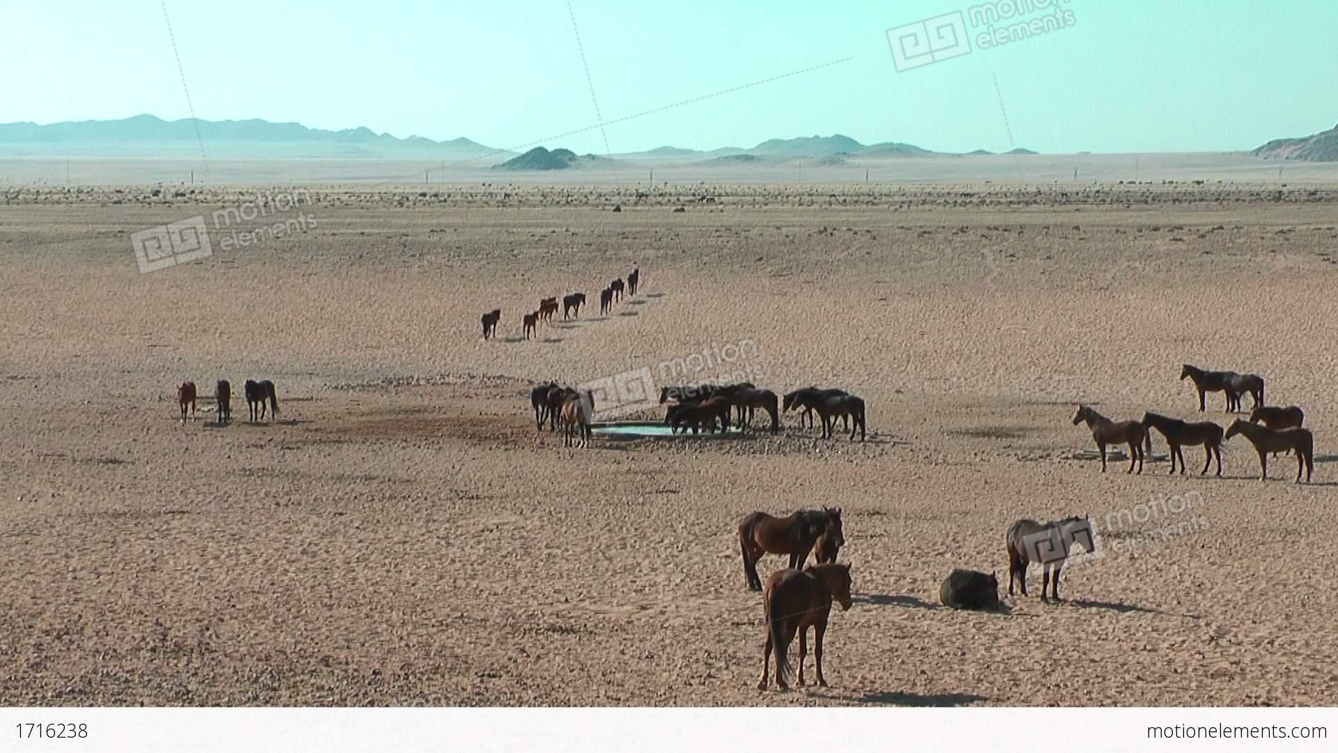 Namib Desert clipart #2, Download drawings