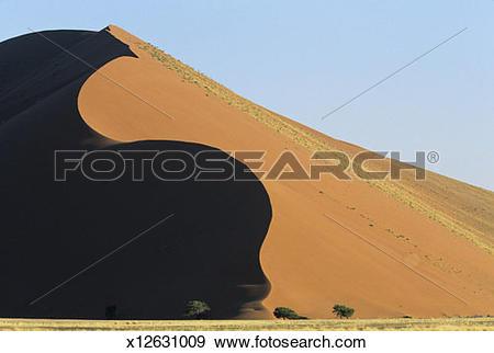 Namib Desert clipart #10, Download drawings