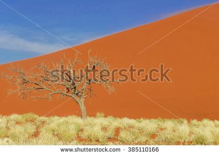 Namib Desert clipart #9, Download drawings
