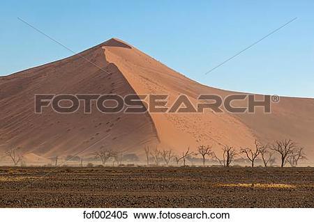Namib Desert clipart #17, Download drawings