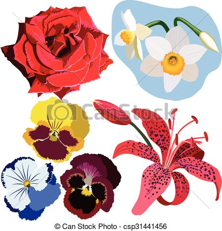 Narcisse clipart #14, Download drawings