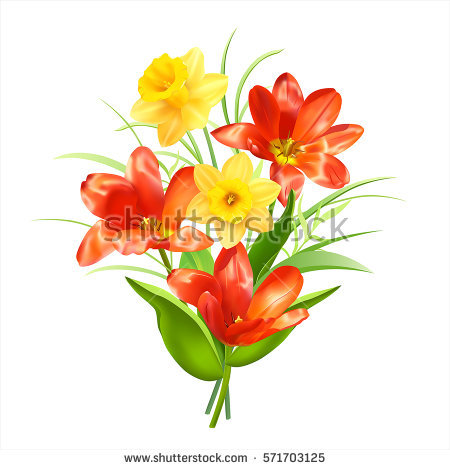 Narcisse clipart #5, Download drawings