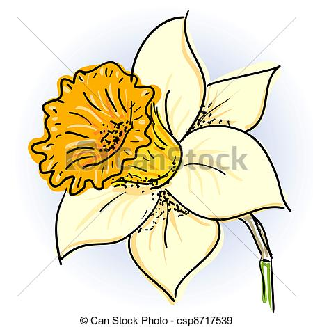 Narcisse clipart #20, Download drawings