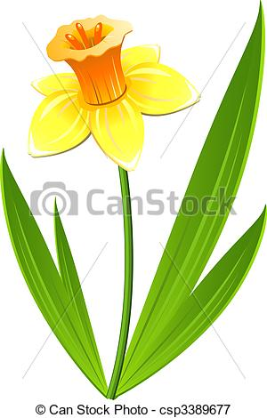 Narcisse clipart #18, Download drawings