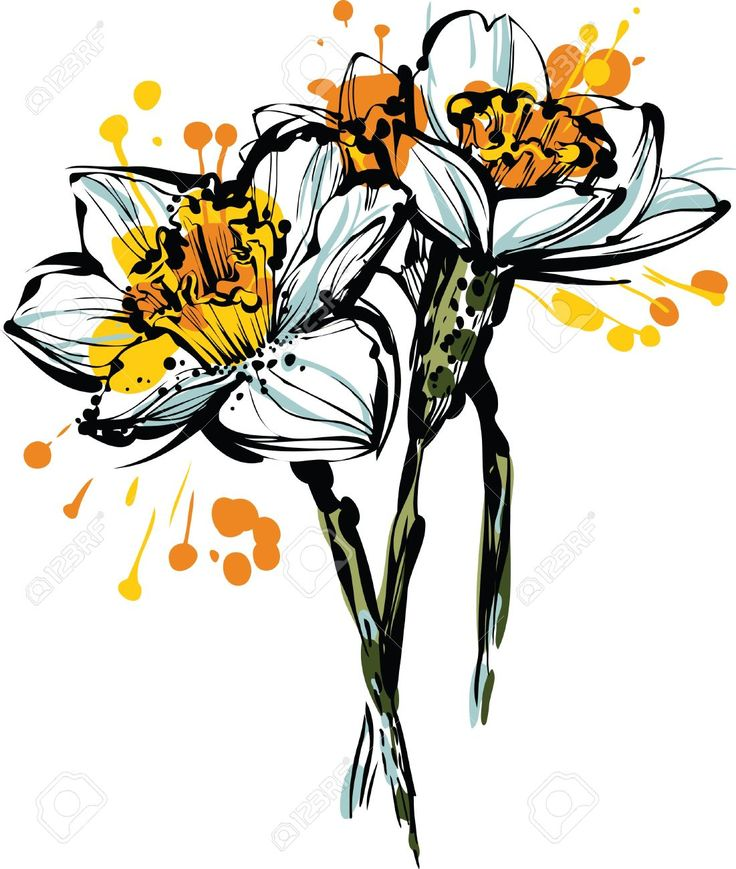 Narcisse clipart #12, Download drawings