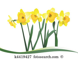 Narcisse clipart #19, Download drawings