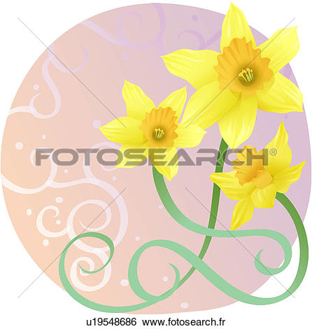 Narcisse clipart #15, Download drawings