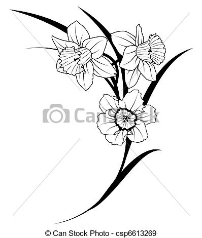 Narcisse clipart #13, Download drawings