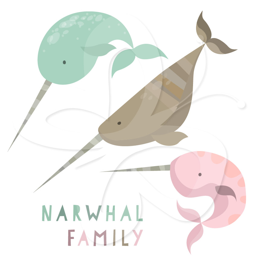 Narwhal clipart #3, Download drawings