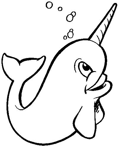 Narwhal clipart #16, Download drawings