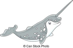 Narwhal clipart #20, Download drawings