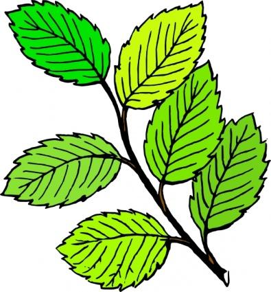 Natur clipart #10, Download drawings