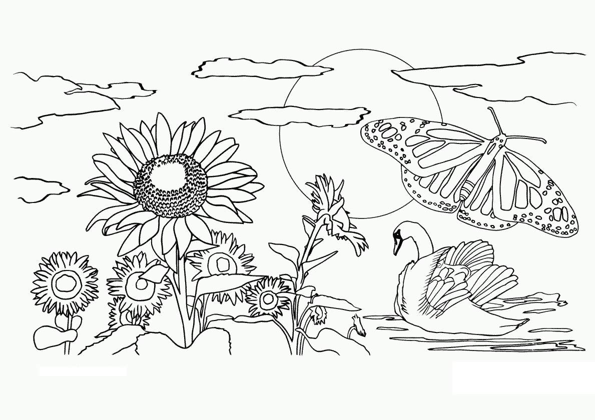 Natur coloring #20, Download drawings