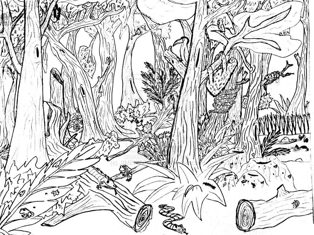 Natur coloring #1, Download drawings