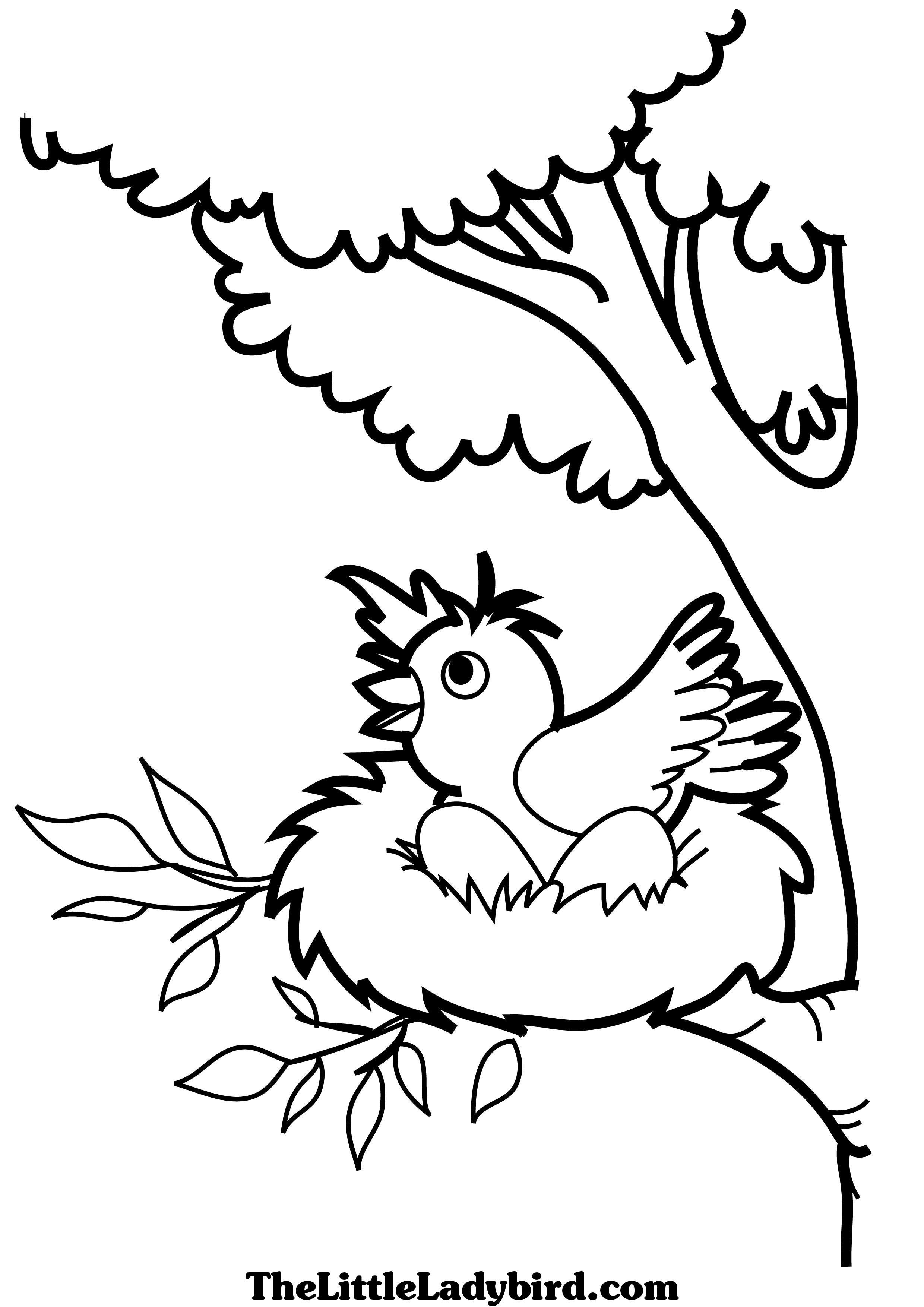 Nest coloring #1, Download drawings