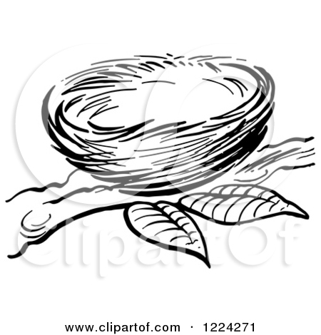 Nest White clipart #8, Download drawings