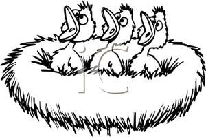 Nest White clipart #10, Download drawings