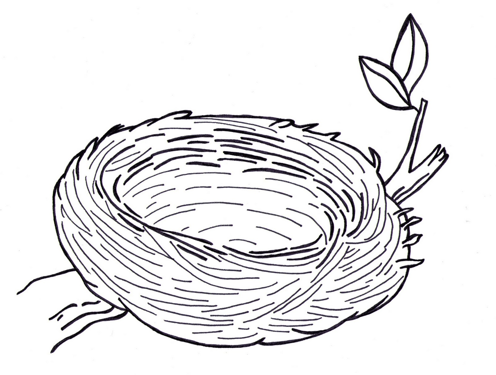 Nest White coloring #3, Download drawings