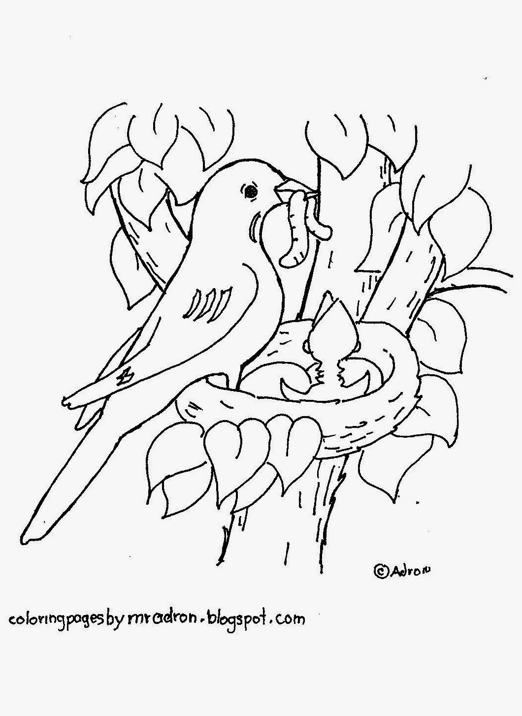 Nest White coloring #5, Download drawings