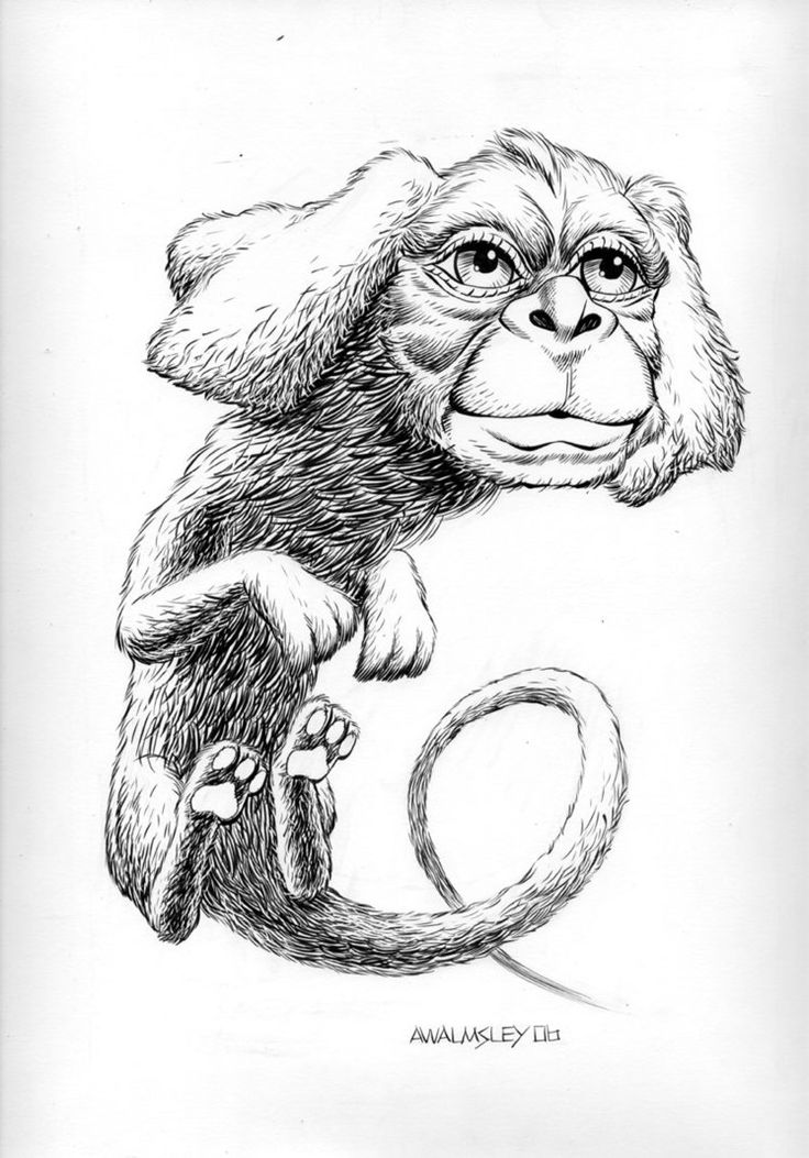 falcor the luck dragon coloring pages | Neverending Story coloring, Download Neverending Story ...