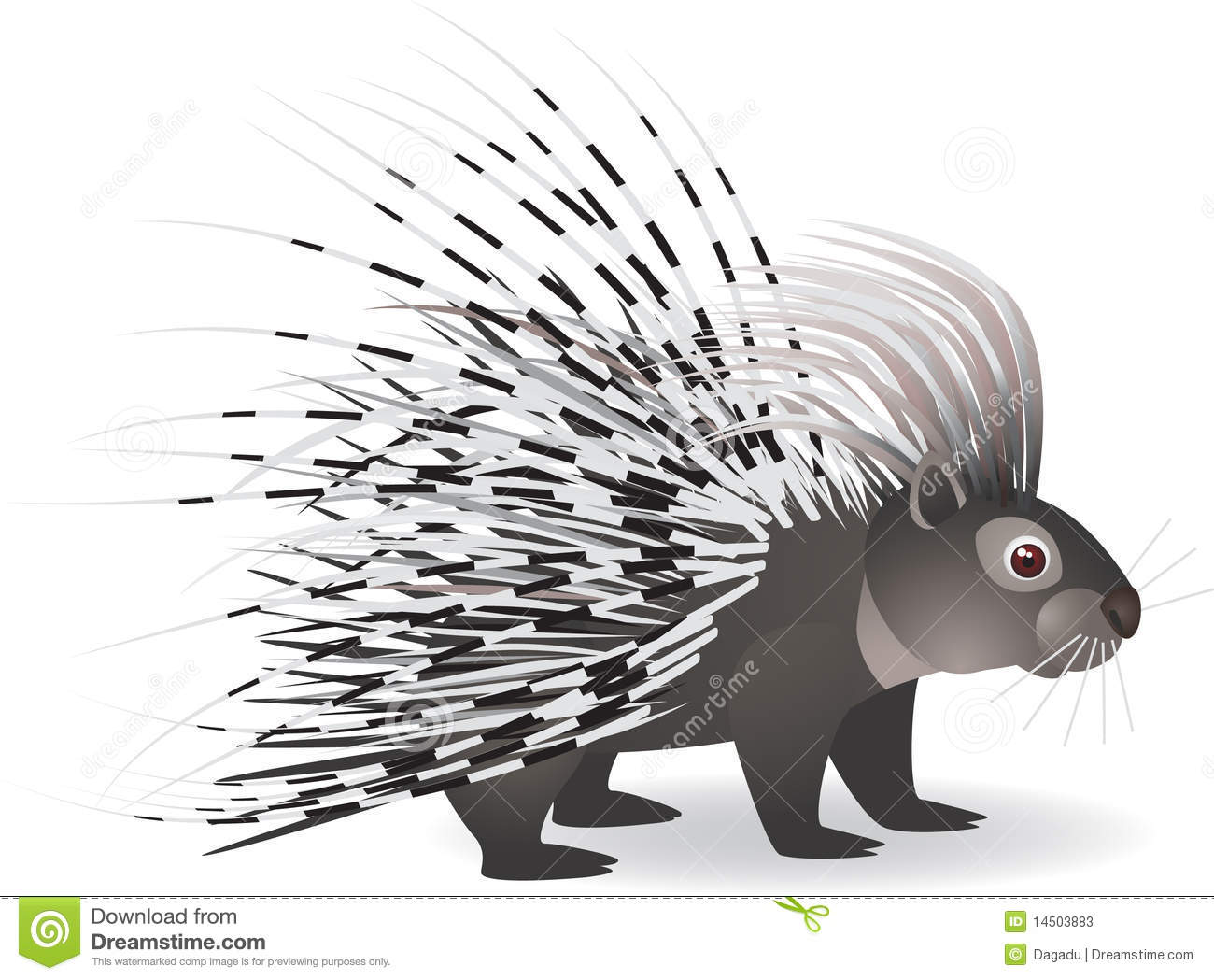 New World Porcupine clipart #5, Download drawings