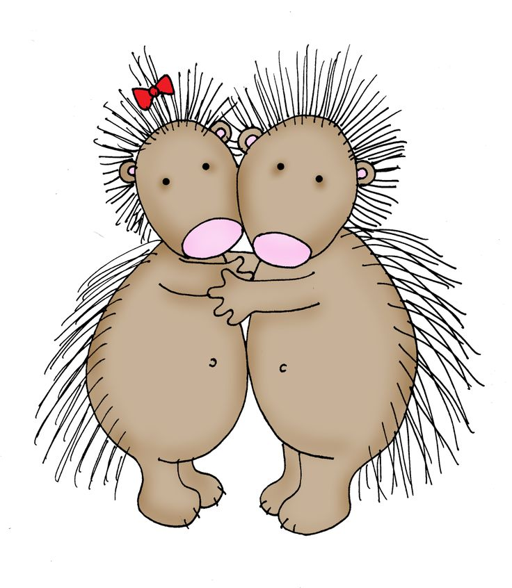 New World Porcupine clipart #8, Download drawings