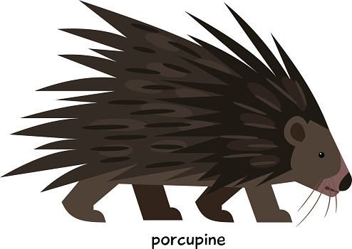 New World Porcupine clipart #19, Download drawings