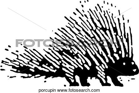 New World Porcupine clipart #18, Download drawings