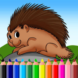New World Porcupine coloring #13, Download drawings