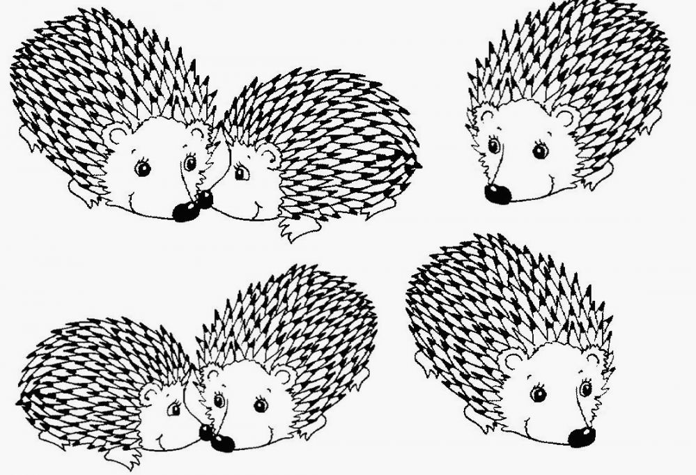 New World Porcupine coloring #18, Download drawings