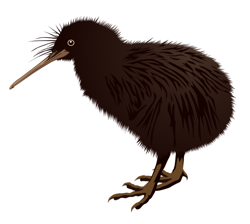 New Zealand clipart #10, Download drawings