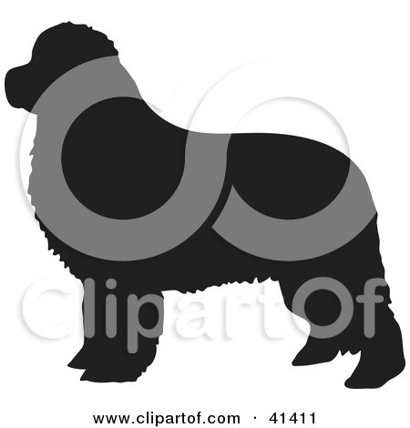 Newfoundland clipart #11, Download drawings