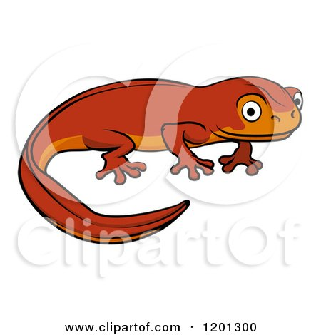 Newt clipart #10, Download drawings