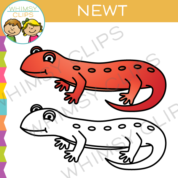 Newt clipart #18, Download drawings