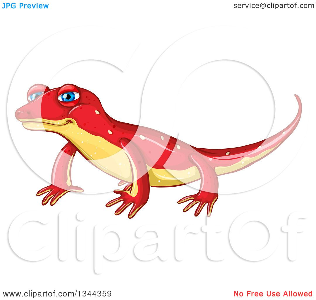 Newt clipart #2, Download drawings
