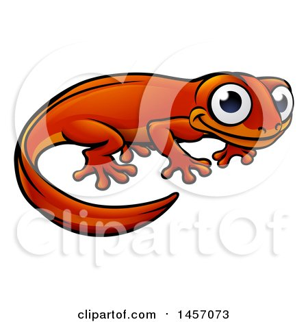 Newt clipart #3, Download drawings