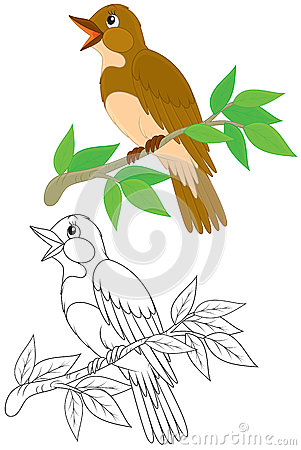 Nightingale clipart #13, Download drawings