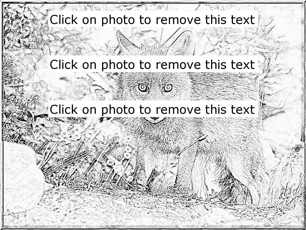 Nikon coloring #1, Download drawings