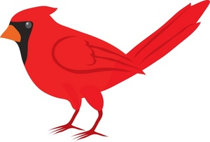 Northern Cardinal clipart #3, Download drawings