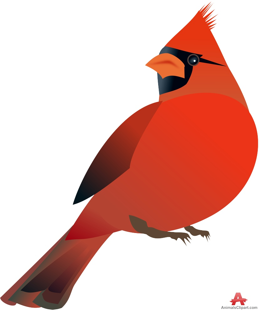 Northern Cardinal clipart #12, Download drawings