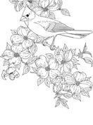 Northern Cardinal coloring #3, Download drawings