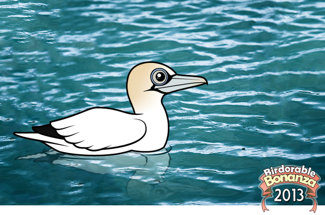 Northern Gannet coloring #2, Download drawings