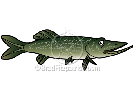 Northern Pike clipart #12, Download drawings