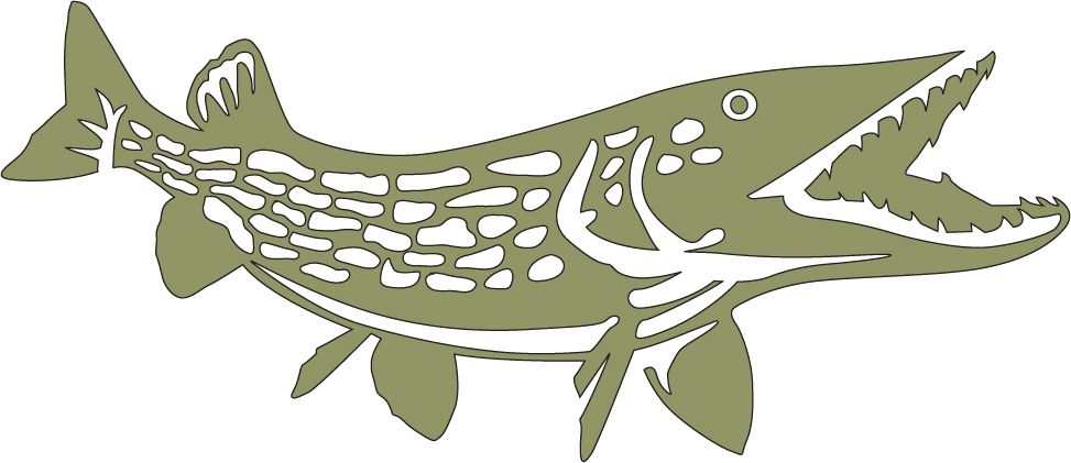 Northern Pike clipart #6, Download drawings